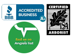 A+ with the BBB Accredited Business, Certified Arborist, and Angies List Awards