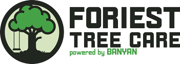 Foriest Tree Care – Powered by Banyan